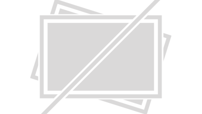 Burgerliebe: Golden Retriever hat Whopper-Duft in der Nase